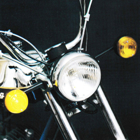 Cobra delux detalj 1976